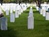 죽음의 공포, 공황장애 겪는 70대 이상 환자수 증가